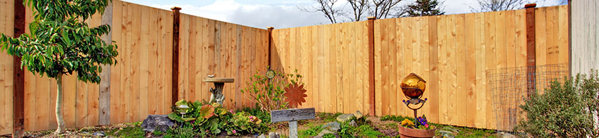 Fencing  Installation Services
